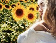 litha summer solstice sun flowers
