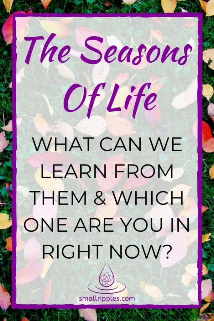 "alt=""Pinterest pin: The seasons of life: what can we learn from them & which on are you in right now?"""