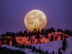Moon Phase Meanings & Ritual Ideas