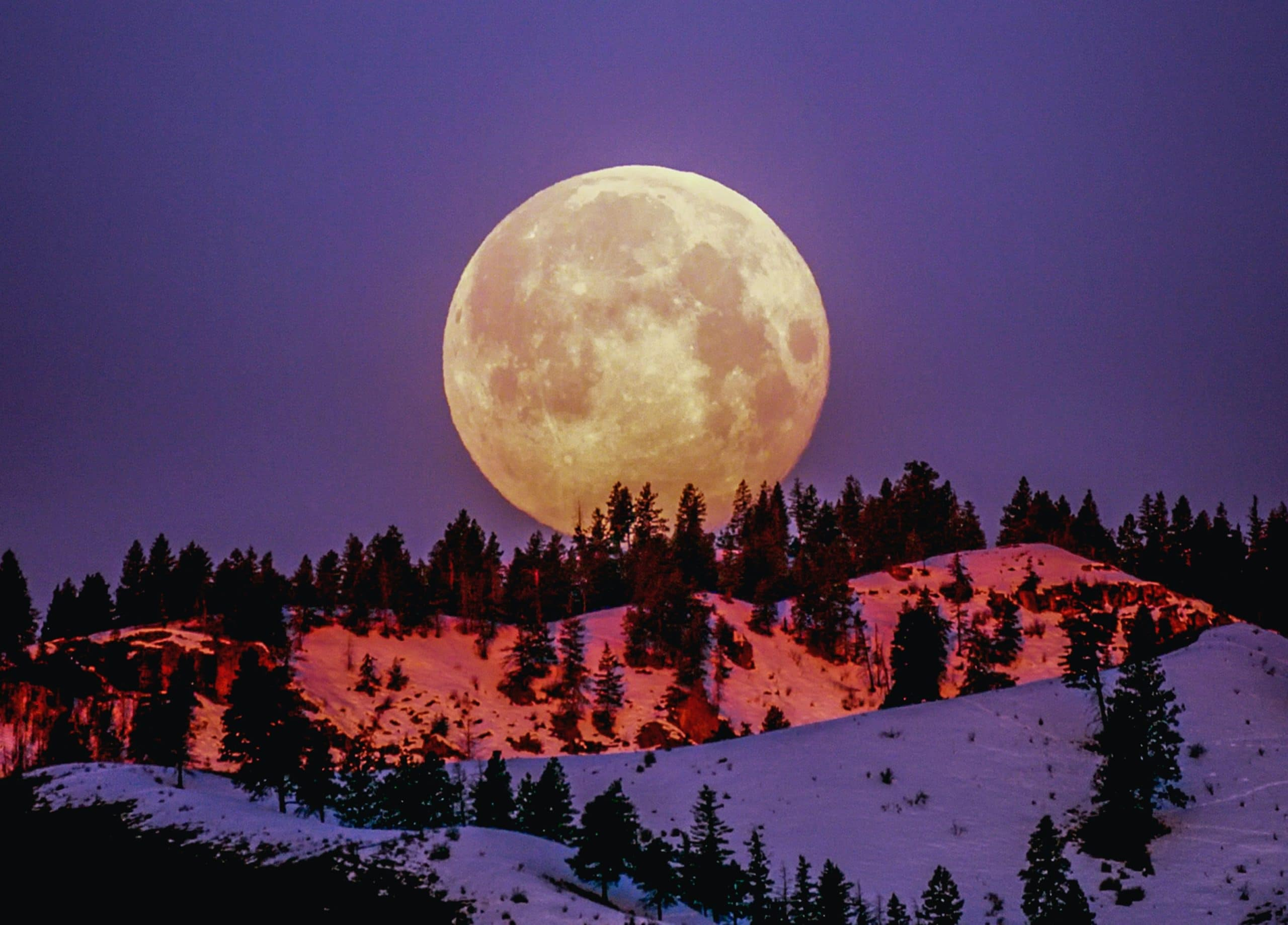 Moon Phase Meanings: Rituals and Activities For Each Moon Phase